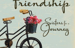 Friendship, Sisters for A Journey